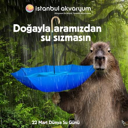 İstanbul Akvaryum SM