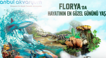 İst Akvaryum Banner
