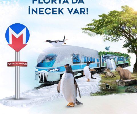 istanbul akvaryum reklam ajansı
