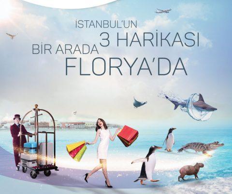 aqua florya istanbul akvaryum crowne plaza reklam ajansı